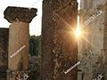 Shutter preview Portfolio Graphic Design Homepage